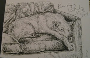 Pen & Ink sketch of my dog, Korrun by Sophie E Tallis